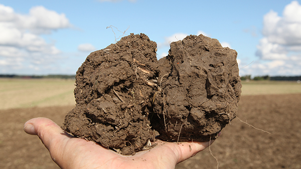Porosity a method to asses soil