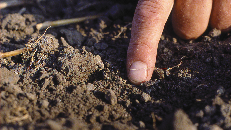 Learn more about soil diagnosis