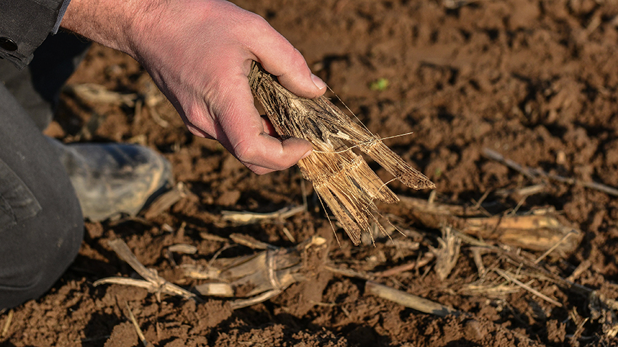 Identify matters that impacts the performance of your soil