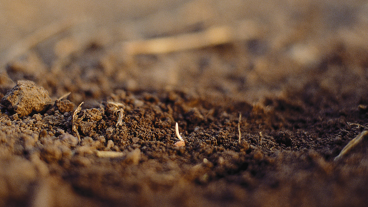 Soil structure describes the physical configuration of the soil