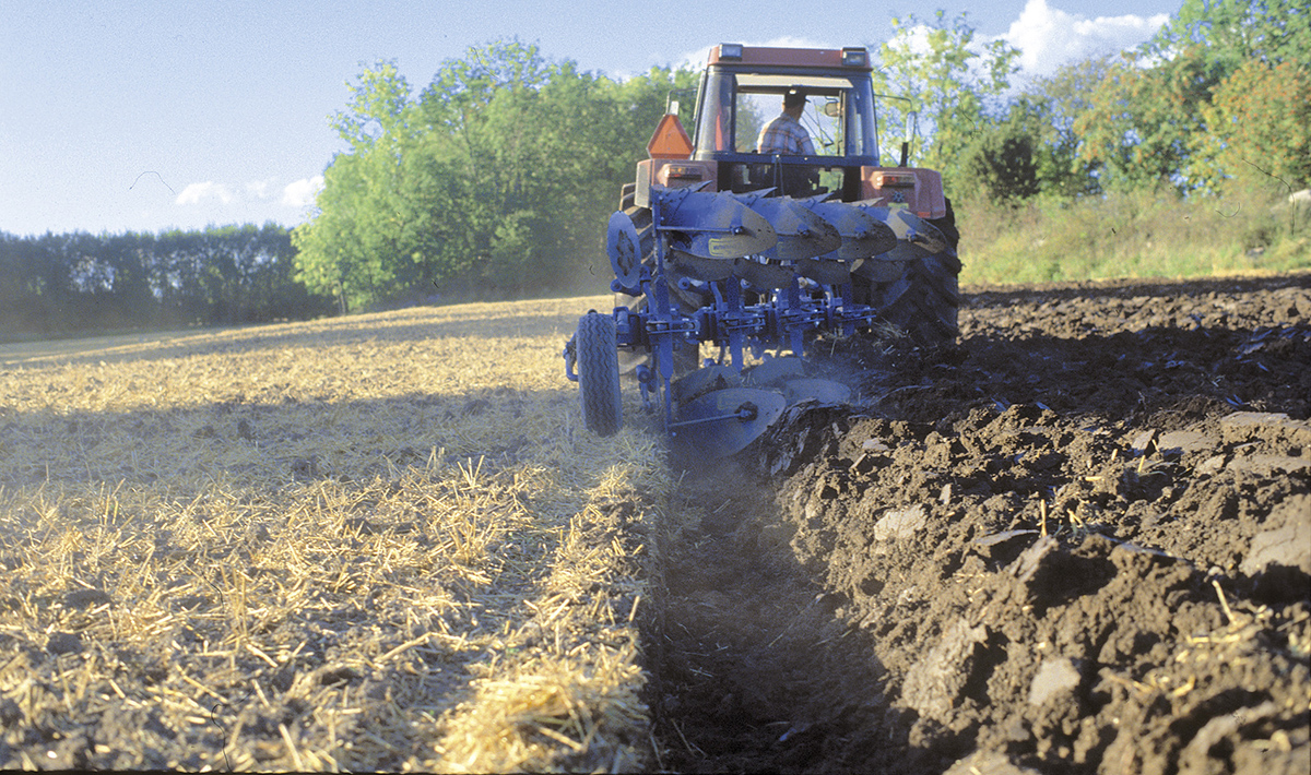 Ploughing on field